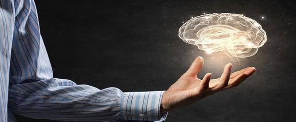 E-Learning Brain